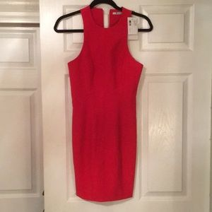NWT T by Alexander Wang red dress